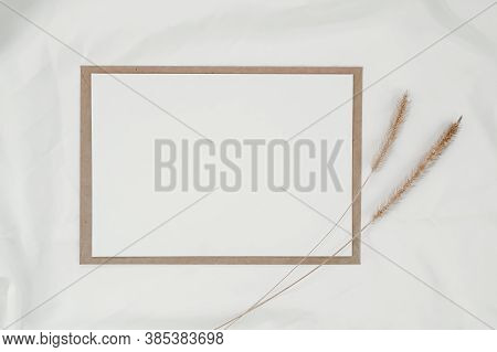 Blank White Paper On Brown Paper Envelope With Bristly Foxtail Dry Flower On White Cloth. Mock-up Of