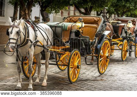 Seville, Spain - June Circa, 2020. Horse Drawn Carriage Waiting For Customers Near The Cathedral, Se