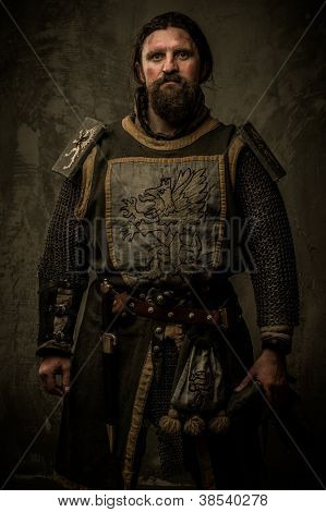 Medieval knight without weapon