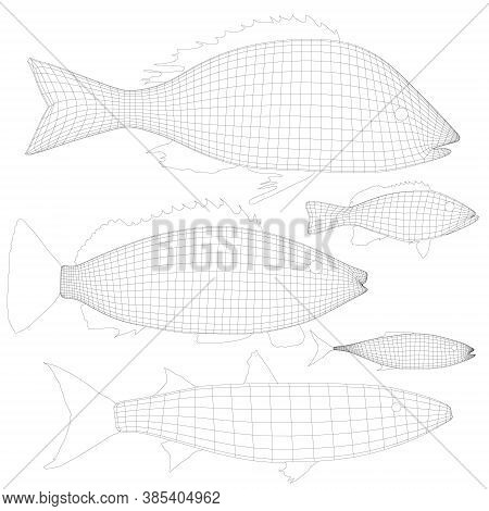 Set With Wireframe Of Various Fishes Isolated On White Background. 3d. Vector Illustration