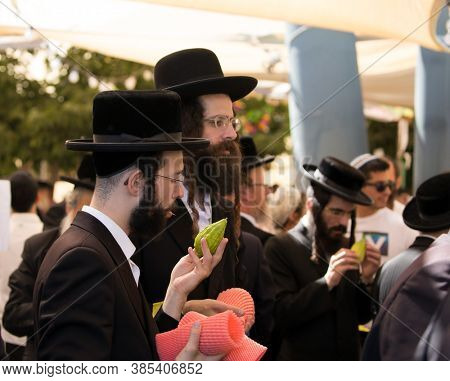 JERUSALEM, ISRAEL - SEPTEMBER 20, 2018: Pre-holiday bazaar in Jerusalem on the eve of Sukkot. Young Jews choose etrog. The concept of religious, ethnographic and photo tourism
