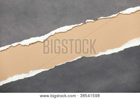 Ripped grey paper with milky space for your message