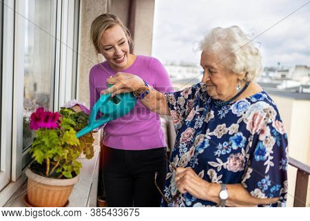 Senior woman and her adult granddaughter watering plants on the balcony