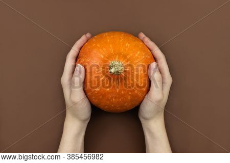 Female Hands Holding Orange Pumpkin Flat Lay On Brown Background Top View With Copy Space. Autumn Ha