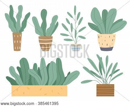 Set Of Green Indoor Houseplants And Flowers In Pots Icons On White. Plants Growing In Pots Or Plante
