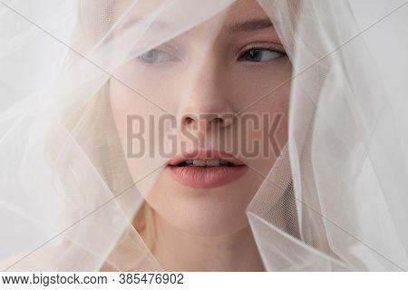 Charming Young Woman Wearing Beautiful White Veil