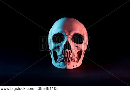 Human Skull On A Black Background. Skull With Blue And Red Illumination. Front View.