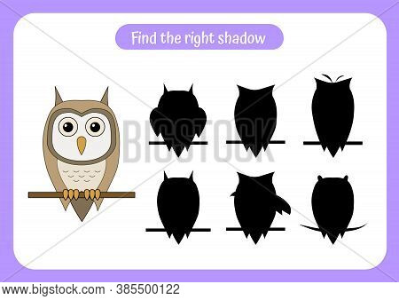 Educational Game For Children. Find Two Same Owls. Trains Attention And Concentration. Worksheet For