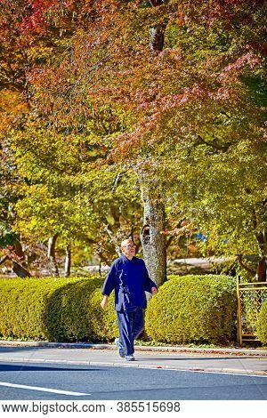 Koyasan, Japan - 5 November, 2019: Male Monk In Blue Robe Having A Stroll At Koyasan In Japan