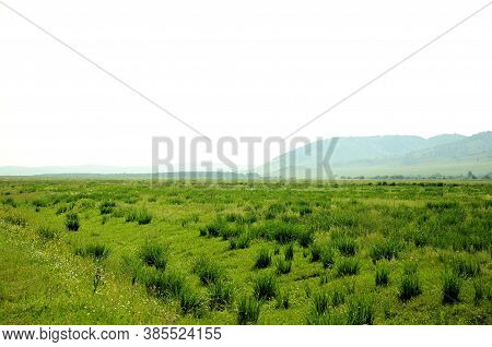 Picturesque Steppe With Small Bushes Surrounded By Mountain Peaks.