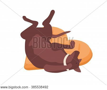Funny Dog In Collar Relaxing Lying On Comfortable Pillow Vector Isometric Illustration. Happy Domest