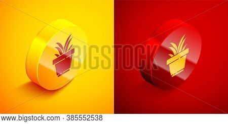 Isometric Flower In Pot Icon Isolated On Orange And Red Background. Plant Growing In A Pot. Potted P