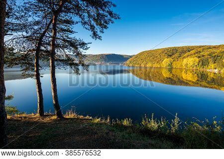 Pine Trees On The Gilau Lake Of Cluj Country. Sunny Morning Autumn Scenery On The Shore. Reflection