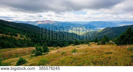 Beautiful Autumn Landscape. Hillside Of Mountain Range With Coniferous Forest And Meadow