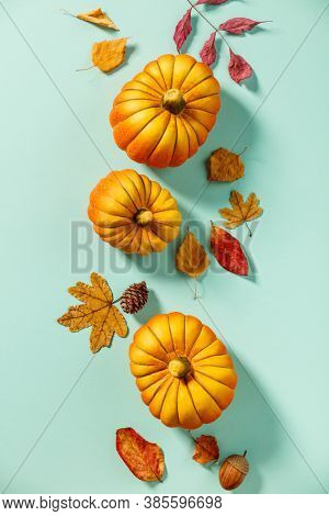 Autumn background creative layout with decorative small pumpkins and autumn leaves
