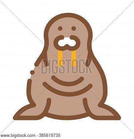 Walrus Animal Icon Vector. Walrus Animal Sign. Isolated Contour Symbol Illustration