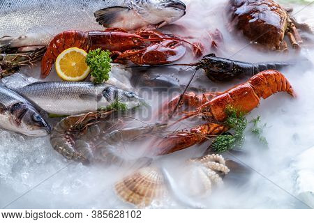 Variety of fresh luxury seafood, Lobster salmon mackerel crayfish prawn octopus mussel red snapper scallop and stone crab, on ice background with icy smoke in seafood market.