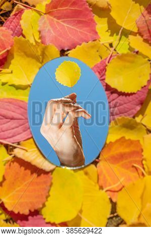 The Mirror Lies On Autumn Yellow And Red Leaves. The Mirror Reflects A Cloudless Blue Sky And A Yell