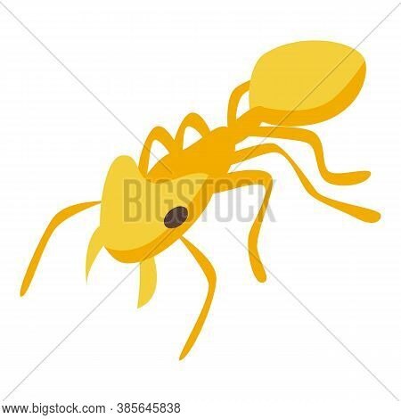 Yellow Ant Icon. Isometric Of Yellow Ant Vector Icon For Web Design Isolated On White Background