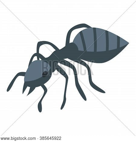 Black Ant Icon. Isometric Of Black Ant Vector Icon For Web Design Isolated On White Background