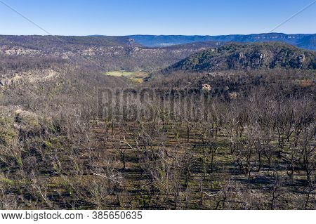 Aerial View Of Forest Regeneration After Bushfires In The Blue Mountains In New South Wales In Austr