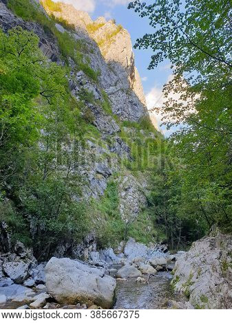 Cheile Rametului Gorges Wild Natural Park River Area. Waterfall On Small River In Dense Forest In Al