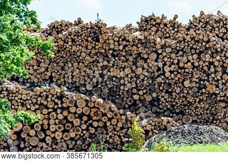 Pile Of Firewood Stacked Outside. Big Pile Of Logs On A Blue Sky Background.