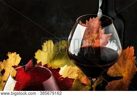 Dry Red Wine In Big Wine Glass, Autumn Still Life With Leaves, Wine Tasting Concept, Rustic Style, S