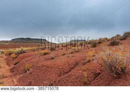Utah Desert With Distant Mesa Landforms In Monument Valley.