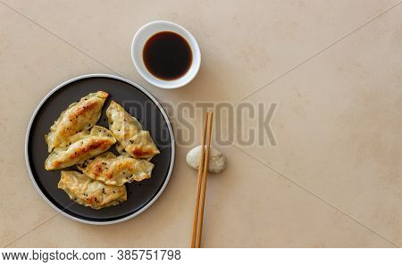 Fried Dumplings With Soy Sauce. Gyoza. Healthy Eating. Vegetarian Food.