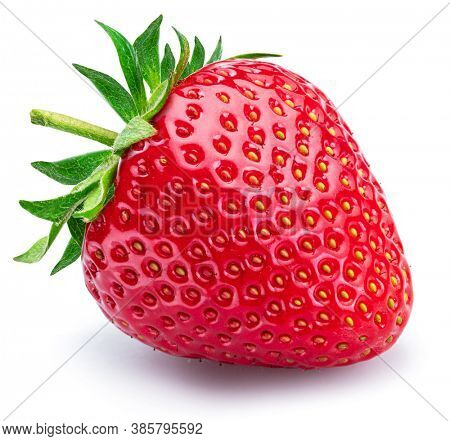 One strawberry isolated on a white background.