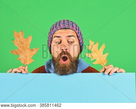 Man Holds Oak Tree Leaves On Green And Cyan Background