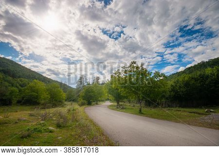 Summer Country Road With Trees Beside. Rural Up Hill, Environment Road. Nature Road. Asphalt Road.