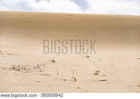 Dead Dunes, Sand Hills Built By Strong Winds, With Ravines And Erosion