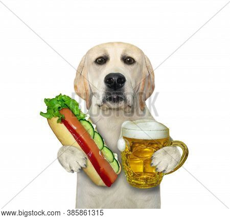 A Dog Is Eating A Hot Dog And Drinking Beer From A Mug. White Background. Isolated.