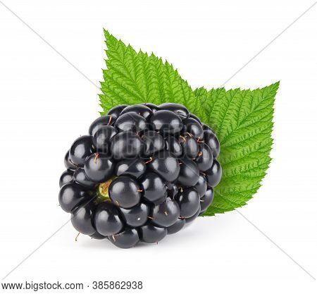 Ripe Blackberry With Leaves Isolated With Clipping Path