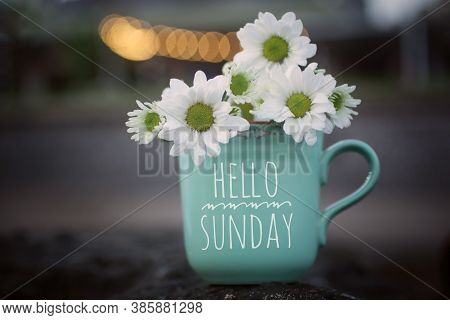 Sunday Coffee. Hello Sunday Card And Greeting Concept. With White Daisy Flowers On Sea Rock And The