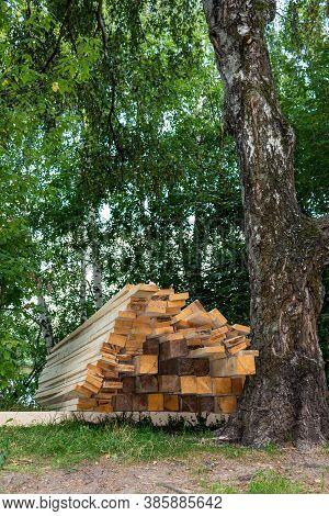 Sawn Planks Are Stacked Next To The Tree. Cutting Down Trees In The Forest. Environmental Problem. W