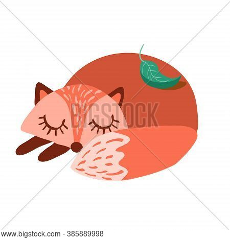 Cute Cartoon Fox In Simple Naive Style. Sleeping Woodland Animal Isolated On White Background. Vecto