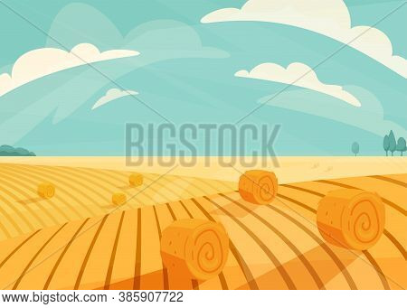 Wheat Field Landscape Vector Illustration After Haymaking. Nature Farm Scenery With Golden Yellow Ha