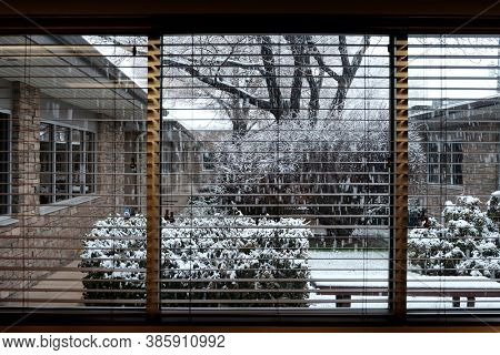 View out an office window with snow falling during a big snow storm in the winter