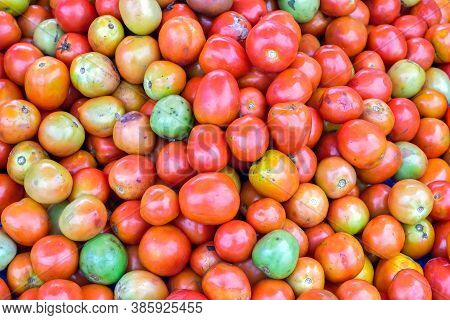 Red Tomatoes Background. Group Of Red Tomatoes