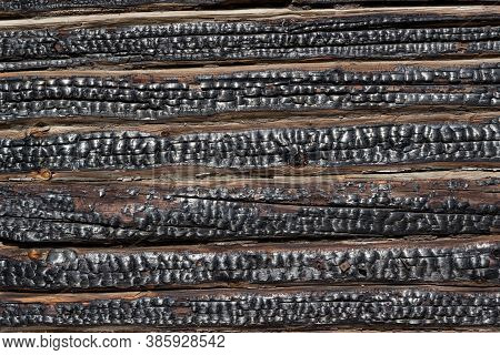 Black Texture Of Burnt Wood. The Wall Of The House Is Made Of Charred Logs. A Fragment Of The Wall O
