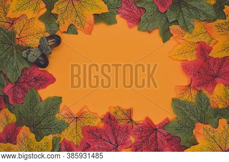 Autumn Background With Acorns, Red, Orange And Green Leaves On Orange Background. Blank For A Cover,