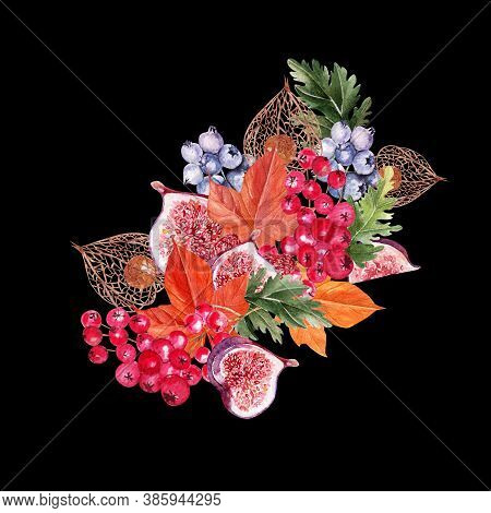 Beautiful Autumn Watercolor Bouquet With Leaves, Blueberries, Viburnum Berries, Physales And Figs. I
