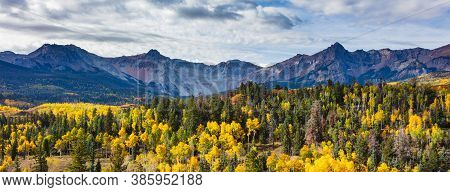 Golden Leaves Of Aspen Trees In The Beautiful Rocky Mountains Of Colorado.the Sneffels Range.