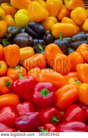 Colorful Green , Red And Yellow Capsicum Or Peppers Paprika Background