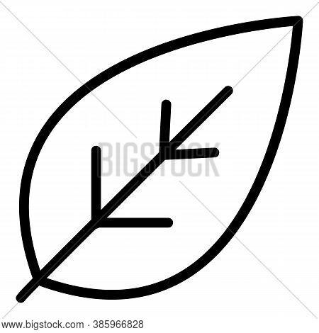 Basil Garden Icon. Outline Basil Garden Vector Icon For Web Design Isolated On White Background