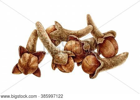 Clove Spice Heap Watercolor Illustration. Hand Drawn Close Up Aromatic Syzygium Aromaticum Herb Dry