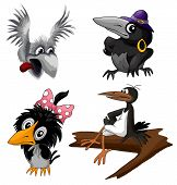 Cartoon grey  black  birds crow and magpie set clipart poster